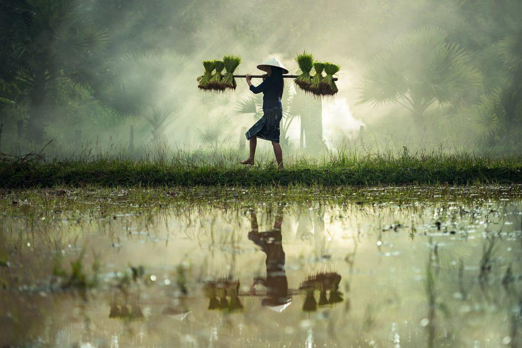 viaggio classico Vietnam