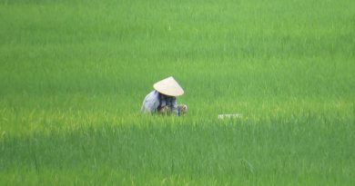 tour low cost Vietnam